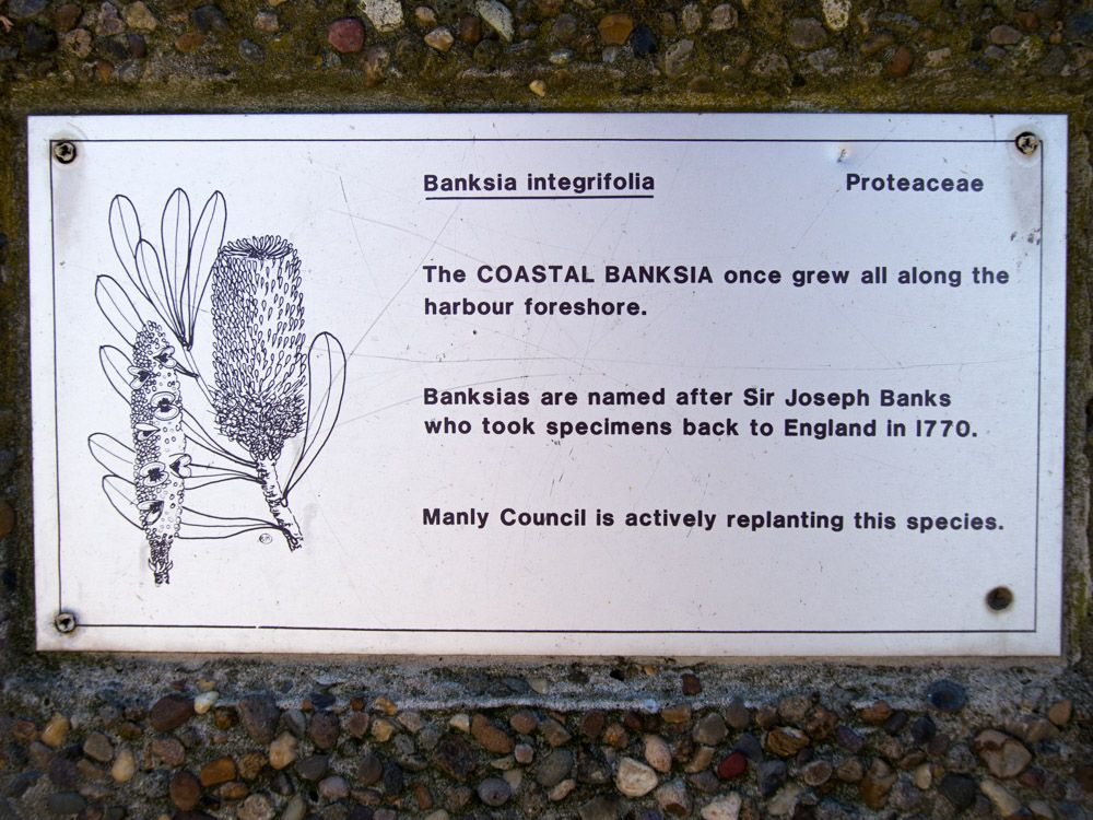 Sign at Manly Beach